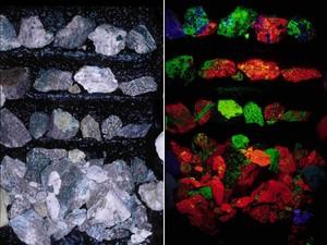 Museu da fluorescência 2