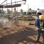 Vigilância Sanitária promove borrifação e orientação a vendedores de alimentos na Expolinda