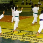 Karatê altaflorestense conquista 20 medalhas no brasileiro em Sergipe