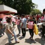 greve professores