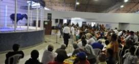 Leilão de gado beneficente em prol ao Hospital de Câncer de Barretos será domingo