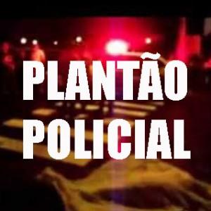 ocorrencias policiais (4)