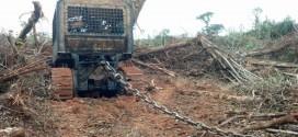 Ibama para grande desmatamento em Mato Grosso