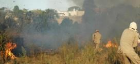 Alta Floresta lidera atendimentos em queimadas durante período proibitivo