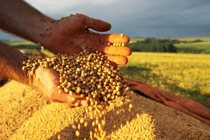 Colheita de soja. Foto Jonas Oliveira/ANPr