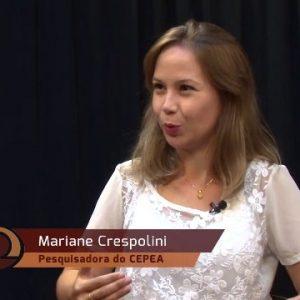Mariane Crespolini