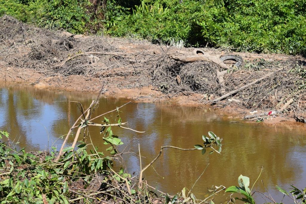 disasorrear rio (4)