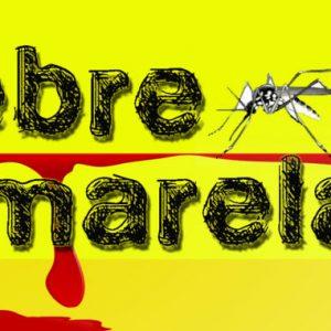 FEBRE-AMARELA-678x381