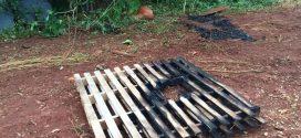 Mulher encontrada morta carbonizada em MT estava grávida de gêmeos, aponta necropsia