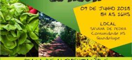 Comunidade Nossa Senhora do Guadalupe realizará sua primeira Feira Agroecológica amanhã