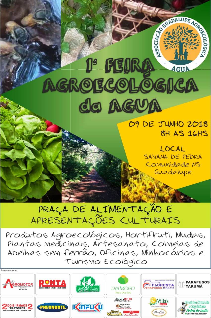 1 feira agroecológica - guadalupe