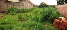 Força tarefa irá fiscalizar terrenos baldios em Alta Floresta; multa poderá chegar a até 15 mil reais