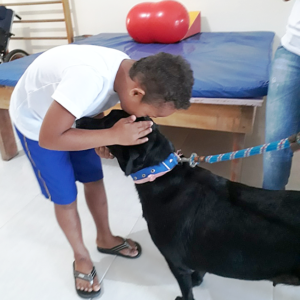 'Animais terapeutas' são usados há anos para ajudar no desenvolvimento de pessoas com deficiência