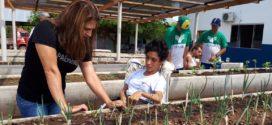 'Educação Alimentar': Alunos da APAE de Alta Floresta aprendem jardinagem em projeto de horta totalmente adaptada