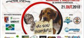 1ª Campanha de Conscientização contra o crime de abandono e maus tratos de animais domésticos será realizado no próximo domingo em Alta Floresta