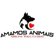 Falta de apoio do poder público afeta trabalho dos voluntários do grupo 'Amamos Animais' em Alta Floresta