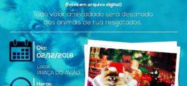 Sessão fotográfica de natal será promovida no próximo mês em prol aos animais de ruas resgatados em Alta Floresta