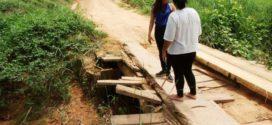 Rua Cambará, localizada na comunidade Novo Horizonte, está interditada para a construção de uma ponte