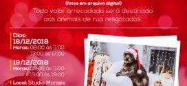 Atenção donos de animais de estimação:  Sessão de fotos temáticas de natal poderão ser feitas hoje e amanhã