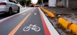 Ciclofaixas serão implementadas nas principais avenidas de Alta Floresta; pintura inicia hoje, afirmou assessoria