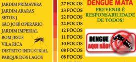 Secretária de Saúde emitirá Boletim Epidemiológico dos bairros que mais possuem focos de dengue em Alta Floresta