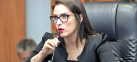 Deputada considera esdrúxula suspensão do manejo florestal e mineração em 8 cidades de MT