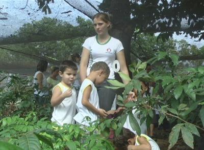 Alunos da rede municipal de Matupá visitam viveiro de mudas