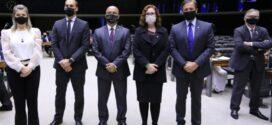 Bolsonaristas assumem órgãos ambientais da Câmara, e ambientalistas preveem 'passagem da boiada'