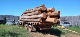 Policiais civis apreendem caminhão com 18 metros cúbicos de madeira irregular no norte de MT