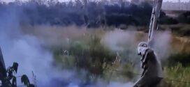 Bombeiros de Alta Floresta contém fogo em pastagem