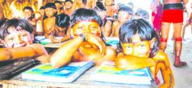 Debatedores demandam escolas indígenas autônomas que respeitem territórios étnicos