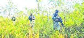 Forças de segurança continuam buscas por bandidos do 'Novo Cangaço' e Bope crê em até oito escondidos