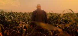 Produtor rural deve emitir o CCIR a partir do dia 19 de julho