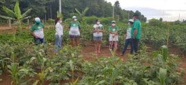 Irrigação para Agricultura Familiar no Bairro Castanhal