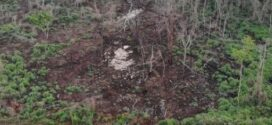 Peritos de Sinop, Alta Floresta e Cuiabá reforçam ações da operação Abafa Amazônia no Nortão